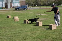 Amtrak K-9 Officer Dan Scanlon demonstrates Bleckey's bomb detection skills