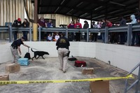 K-9 Unit demonstration in Jacksonville